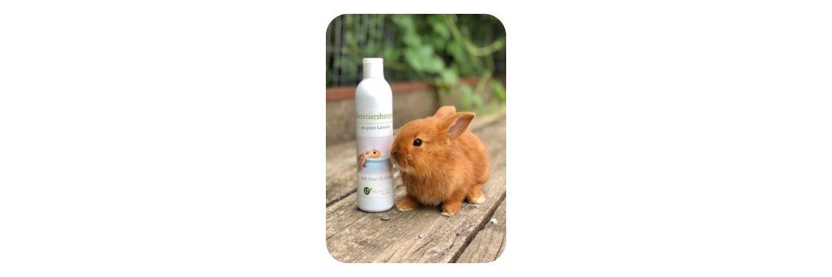 Auch die Kleinsten lieben unsere Tiershampoos - Auch die Kleinsten lieben unsere Tiershampoos