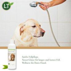 Hundeshampoo | Bio | sanfte Fellpflege ohne Chemie & Seife | gegen Juckreiz | hypoallergen | mit original marokkanischer Lavaerde | 250 ml | neuer Glanz für Kurz- und Langfell