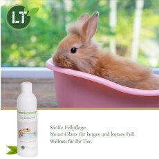 Kaninchenshampoo | Bio | sanfte Fellpflege ohne Chemie & Seife | gegen Juckreiz | hypoallergen | unterstützt die Wundheilung | mit original marokkanischer Lavaerde | 250 ml