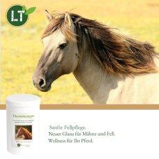 Trockenshampoo für Pferde - mit original marokkanischer Lavaerde | Vegan und Bio | zur chemiefreien Fellpflege | 1 kg