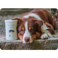 Trockenshampoo für Hunde - mit original...