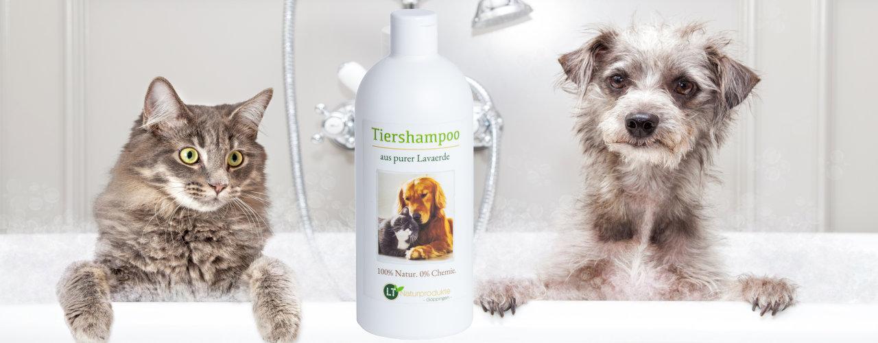 Innovativ und sehr sanft: Unsere Tiershampoos